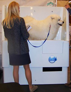 Self service dog wash wash n wiggle our self service wash may be the perfect option for you solutioingenieria Gallery